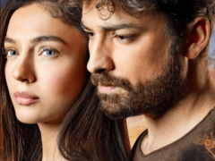 Турецкий сериал «Птица Феникс»: содержание серий